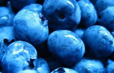 Blueberries: A Superfood